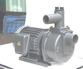 Máy bơm tự hút Đầu Gang 1HP HSP250-1.75 20