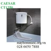 Bàn cầu xổm CAESAR CT1250