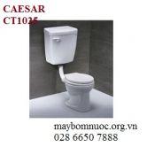 Bàn cầu trẻ em CAESAR CT1025