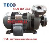 Máy bơm lý tâm đầu gang Teco G33-80-2P-3hp