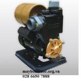 Máy bơm dân dụng APP PW-139EA (loại tự động)
