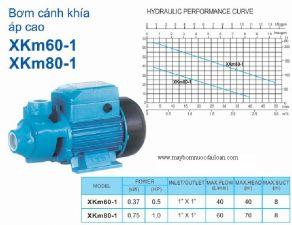 Máy bơm nước đẩy cao Lepono 2XCm32/200C