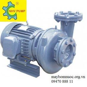Máy bơm dạng xoáy Nation Pump HVP380-12-2 20