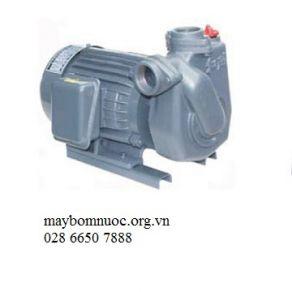 Máy bơm Tubin 3HP HTP250-22.2 265