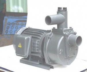 Máy bơm tự hút Đầu Gang 1HP HSP250-1-75 26