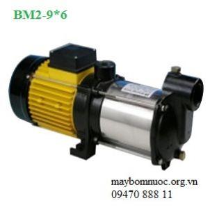 Máy bơm trục ngang Ewara BM 2-9*6
