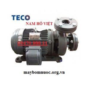 Máy bơm lý tâm Teco G31-40-2P-1hp