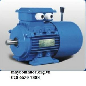 Motor Hengsu
